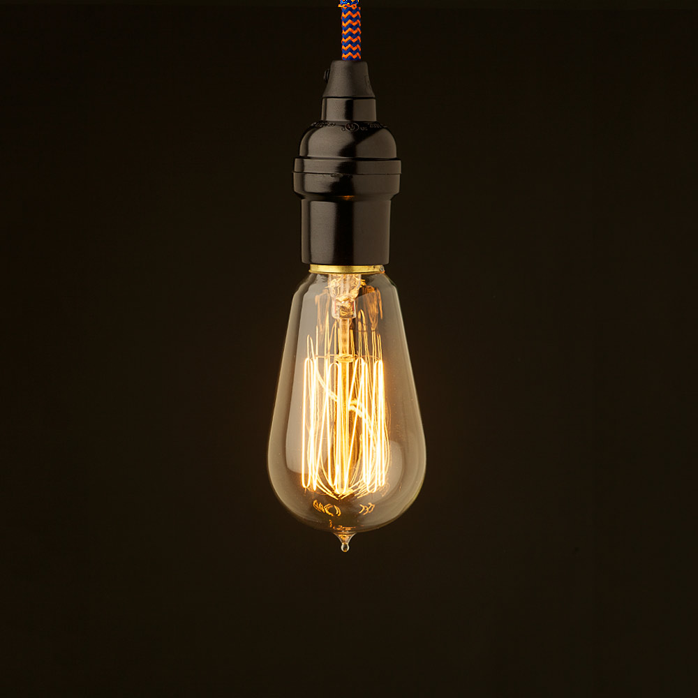 Edison Style Light Bulb And Vintage Bakelite Fitting