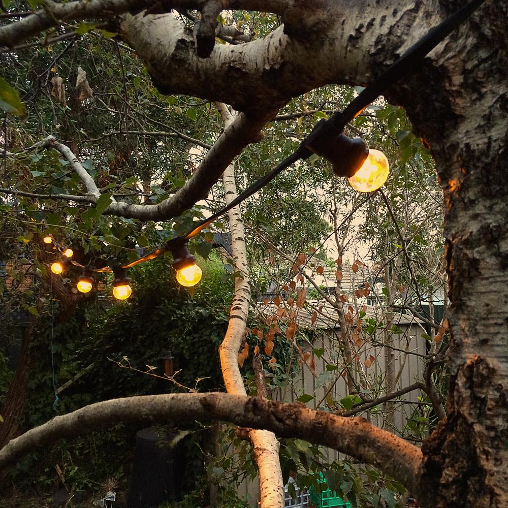 Low Voltage Outdoor Party Lights: Low Voltage G45 LED Festoon Kit At 90cm Intervals