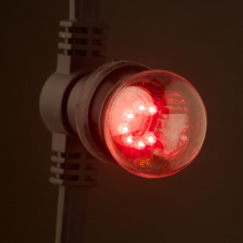 24V-Red-transparent-LED