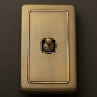 Traditional Antique Brass large plate single rocker switch