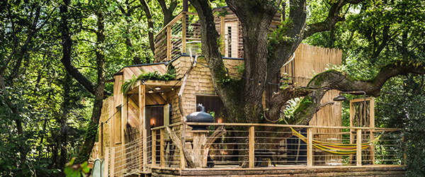 craftycamping-thewoodsmanstreehouse-back-oak-landscape2